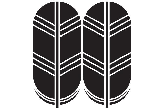 鷹の羽紋のルーツは先祖の菊池氏