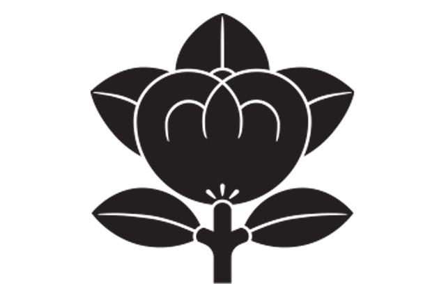 甲賀山中家の家紋 橘紋