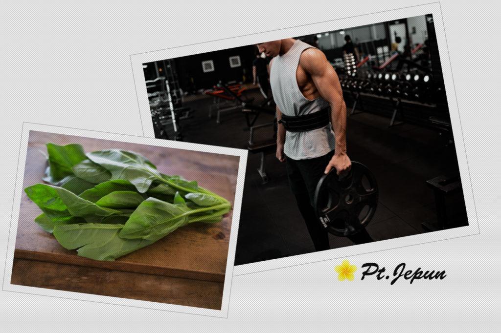 筋トレにほうれん草がおすすめの理由!摂取量や効果的な食べ方は?