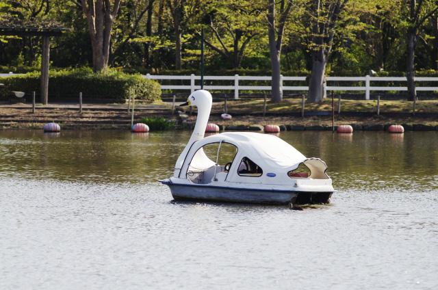 湖に浮かぶスワンボート