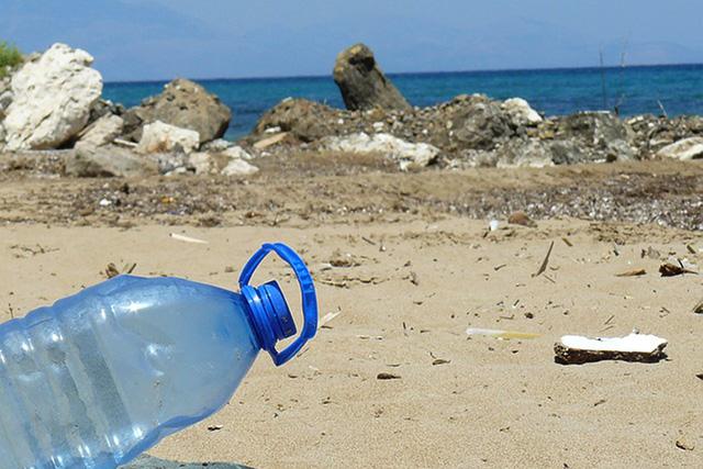 海岸に流れ着いたペットボトル