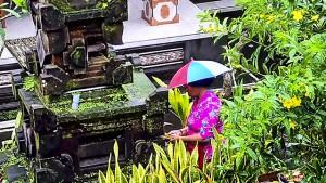 インドネシアのビジネスチャンスと謎すぎる需要