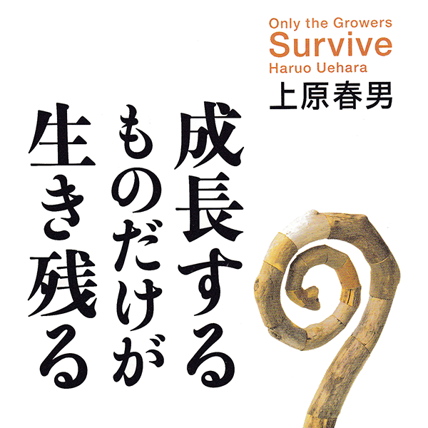 survive_sq
